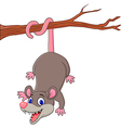 Cartoon funny Opossum on a Tree Branch vector image