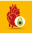 food healthy heart green avocado concept design vector image