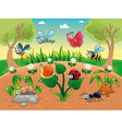 Bugs 1 snail with background vector image