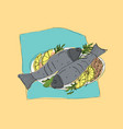 freehand sketch of pair of grilled or roasted fish vector image