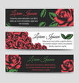 red rose flowers horizontal banners template vector image