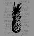 single sketch pineapple vector image
