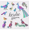 ethnic colored birds vector image