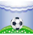 Field with ball vector image