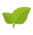 leaves natural plant sheet vector image