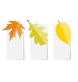 Autumn Leaves Infographic Templates for Business vector image vector image