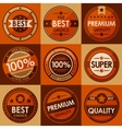 Set of retro vintage badges and labels Flat Style vector image