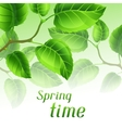 Spring time with branches of green vector image