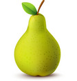 Juicy pear isolated on white vector image vector image