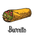 Burrito - mexican traditional food color vector image