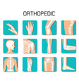 orthopedic and spine icon set on white background vector image