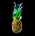 single sketch pineapple vector image