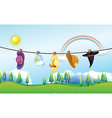 Different kinds of hats hanging under the sun vector image vector image