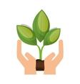 ecology plant symbol icon vector image