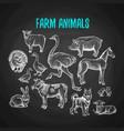 Set of farm animals in chalk style on blackboard vector image