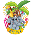 Animals in the circus vector image