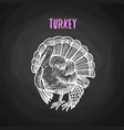 bird turkey in chalk style on blackboard vector image
