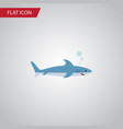 isolated gray fish flat icon shark element vector image