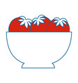 Isolated tomatoes bowl vector image