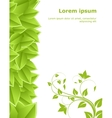 Template with leaves vector image vector image