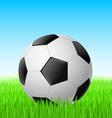soccer ball vector image vector image