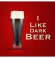 I love beer vector image