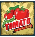 vintage tomato vector image