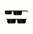 Pixel Art Sunglasses vector image vector image