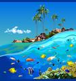 cartoon underwater world near a tropical island vector image