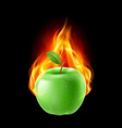 Green apple in the fire vector image