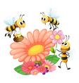 Blooming flowers with bees vector image