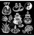 Hand drawn medical herbs cosmetics healing set vector image