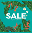 sale tropical summer poster with green leaves and vector image