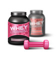 Woman Dumbbell And Sport Nutrition vector image