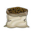 bag of coins money banking old-style vector image