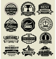 Premium quality badges vector image