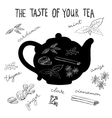 hot tea flavors tea herbs and spices vector image