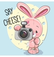 Rabbit with a camera vector image