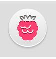 Raspberry icon Fruit vector image