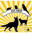 Pet shop advertising vector image vector image