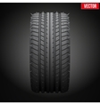 winter tires with metal spikes on dark background vector image