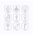 Cake candy and muffin icons Cupcake sign vector image