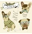 Cute dogs collection vector image