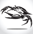 crab 2 vector image