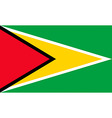 guyanese flag vector image vector image
