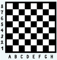 Modern chess board vector image vector image