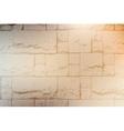 Decorative Brickwall Texture vector image