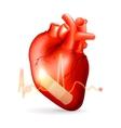 Damaged heart vector image