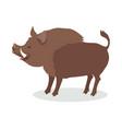 wild boar cartoon flat vector image