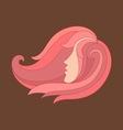 beautiful hair woman vector image